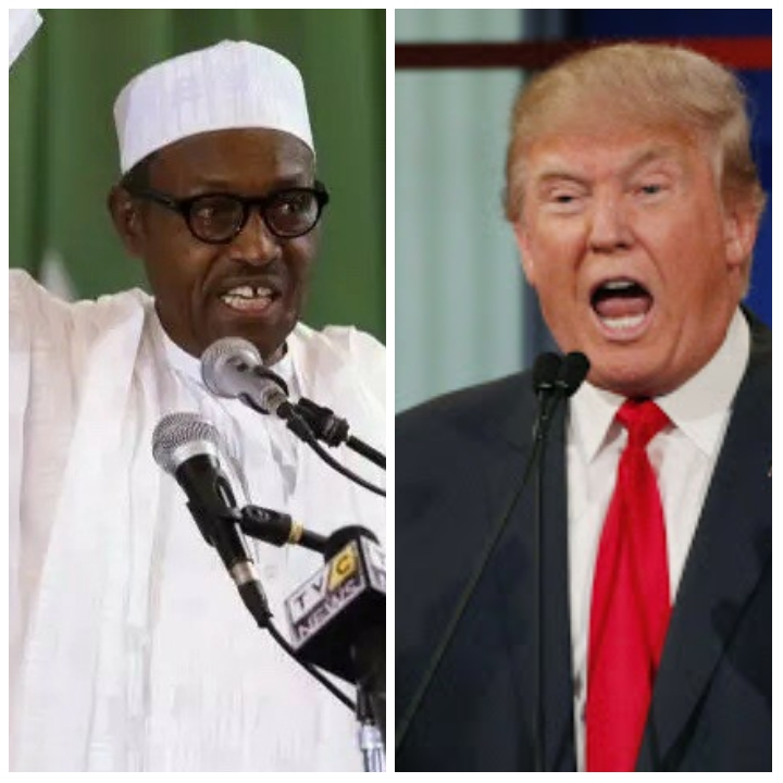 Trump, Buhari And The Crude Art Of Wobbling And Fumbling